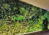 高仿真植物墙系列